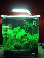 Lebendfutter-nano-cube-30-liter.jpg